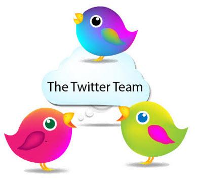 twitter-team